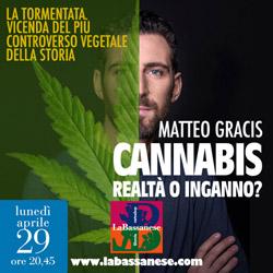 CANNABIS: inganno o realtà? Con Matteo Gracis senza censura.