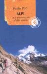 Alpi. Una grammatica d`alta quota